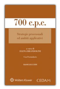 Copertina di '700 c.p.c. Strategie processuali ed ambiti applicativi'