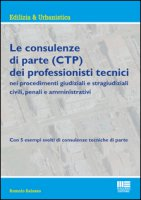 Le consulenze di parte (CTP) dei professionisti tecnici