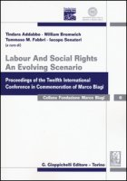 Labour and social rights. An evolving scenario proceedings of the twelfth international conference in commemoration of Marco Biagi