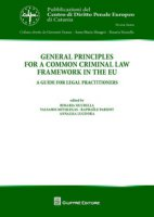 General principles for a common criminal law framework in the EU. A guide for legal practitioners