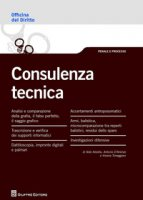 Consulenza tecnica