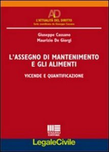 Copertina di 'L' assegno di mantenimento e gli alimenti'